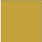 Logo MUSE